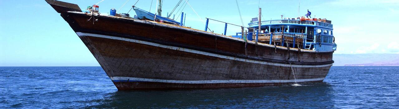 PROTECTING SHIPS FROM SOMALI PIRATES